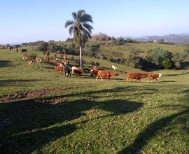 area-rural-bage-imagem