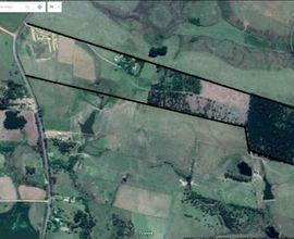area-rural-sao-pedro-do-sul-imagem
