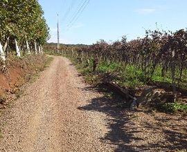 fazenda-bento-goncalves-imagem