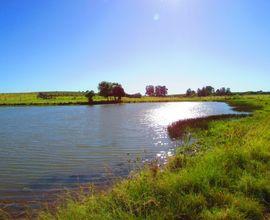 fazenda-itacurubi-imagem