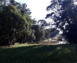 terreno-gramado-imagem