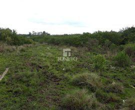 area-rural-santa-maria-imagem