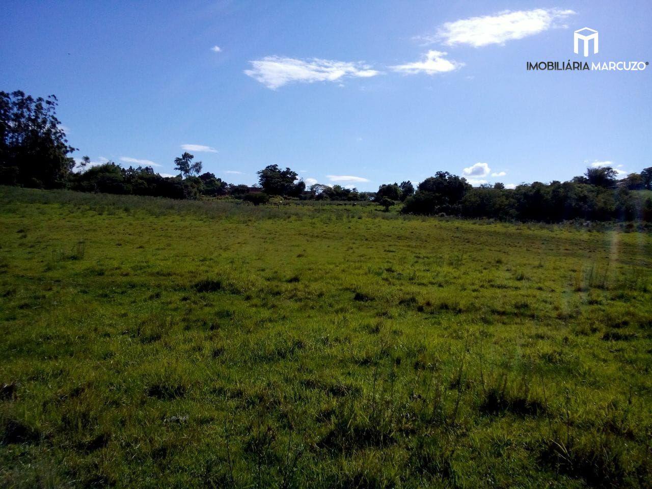 Fazenda/sítio/chácara/haras com 3 Dormitórios à venda, 62.000 m² por R$ 430.000,00