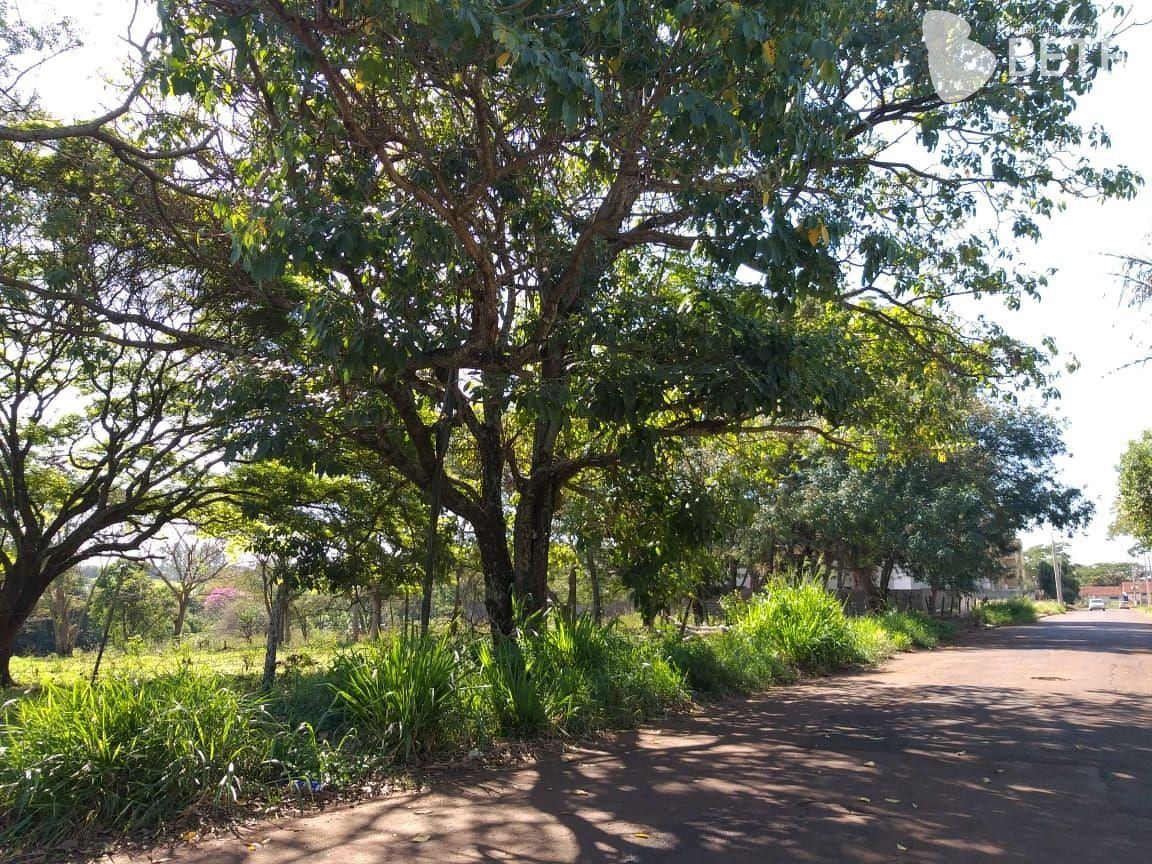 Terreno/Lote à venda  no Vila São Luiz - Dourados, MS. Imóveis