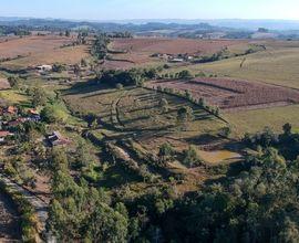 sitio-agronomica-imagem