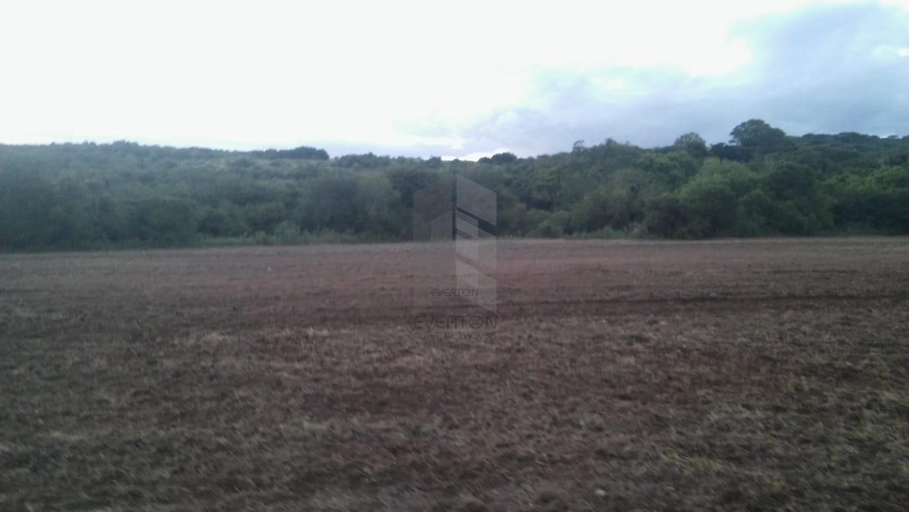 Fazenda/sítio/chácara/haras à venda  no Zona Rural - Santa Maria, RS. Imóveis