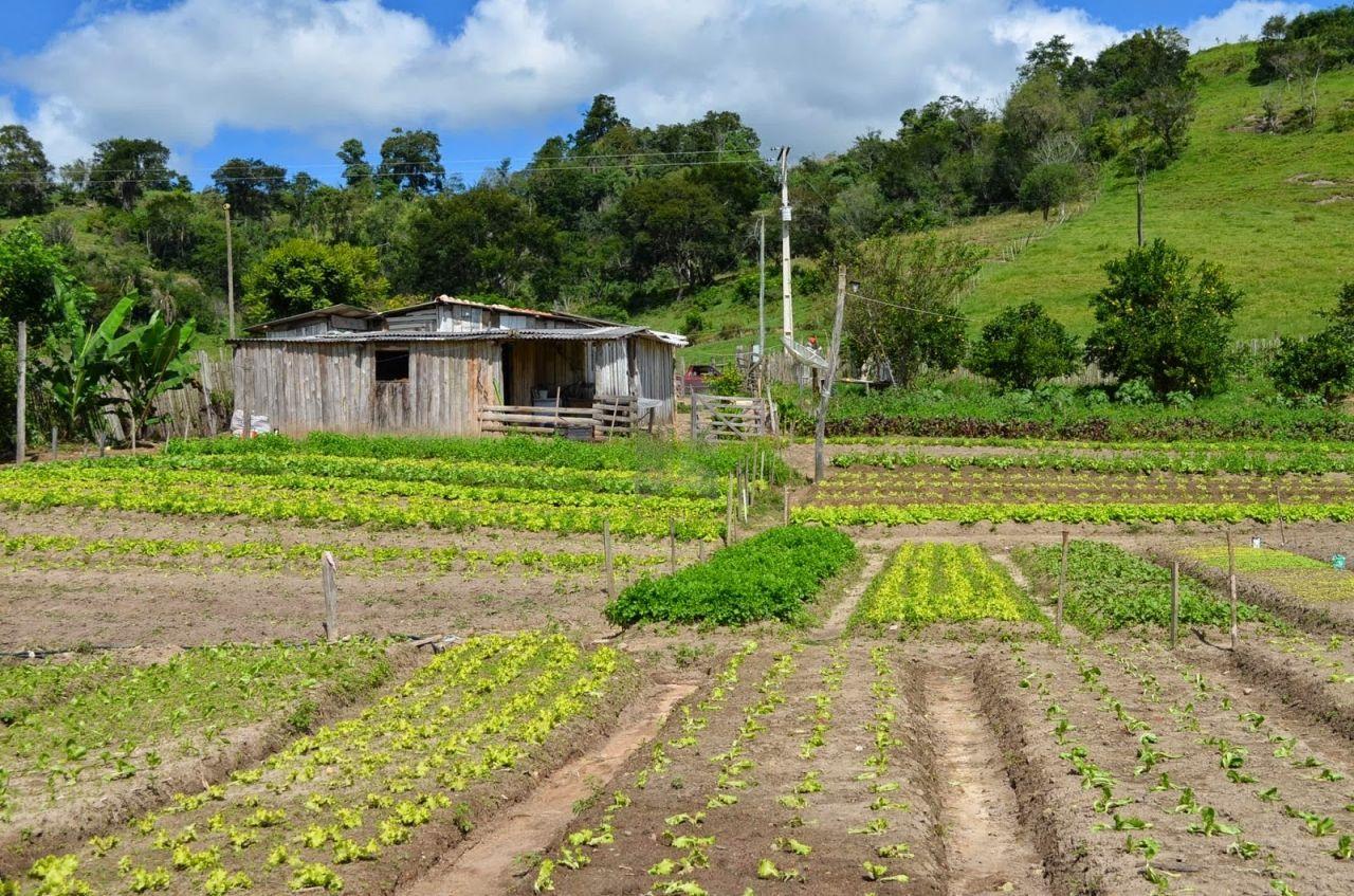 Fazenda/sítio/chácara/haras à venda  no Km 3 - Santa Maria, RS. Imóveis