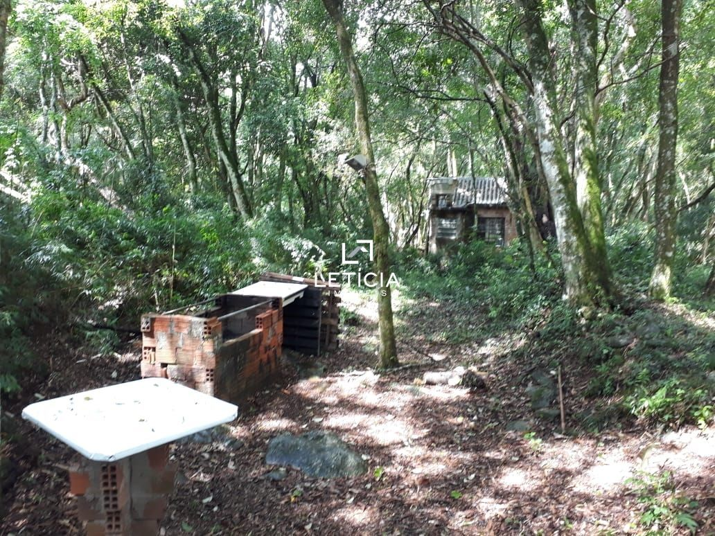 Fazenda/sítio/chácara/haras à venda, 1.600 m² por R$ 65.000,00