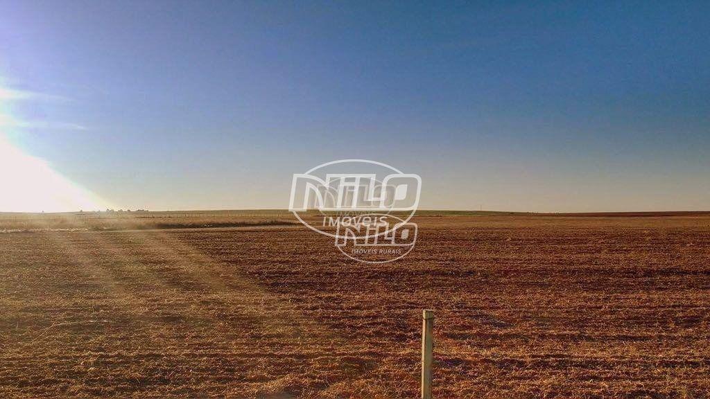 408 hectares no Alegrete