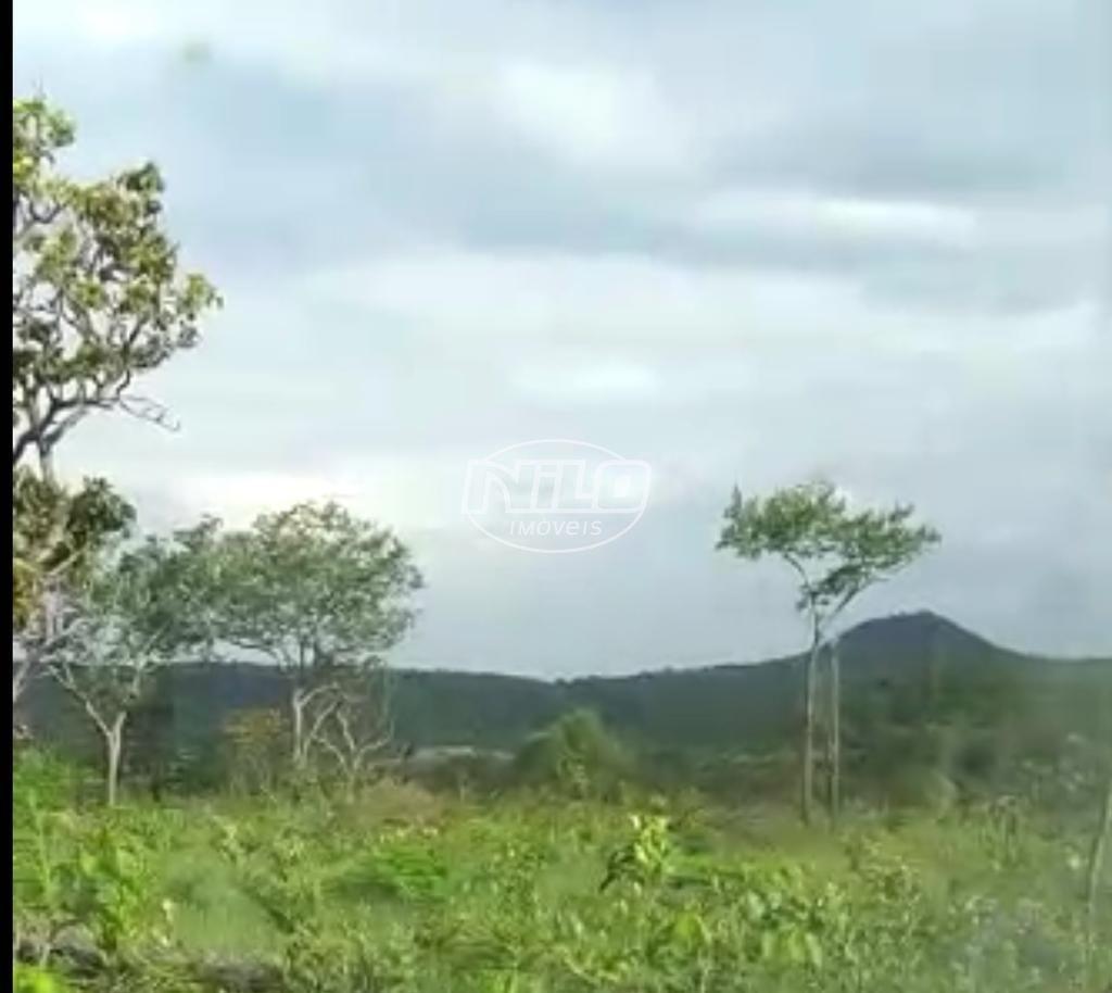 Fazenda Dupla Aptidão a 59 km de Palmas/TO