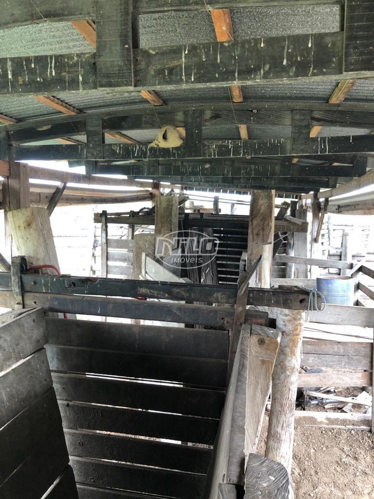 LINDA PROPRIEDADE NO PANTANAL MATO-GROSSENSE COM ÁREA TOTAL DE 4913 HECTARES FAZENDA ÁGUA LIMPA