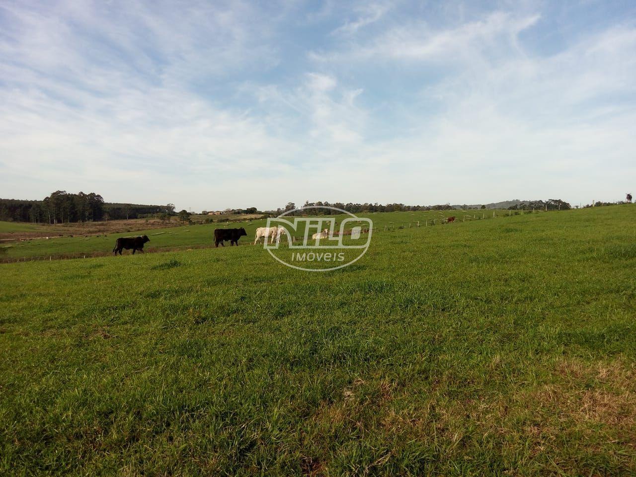 Fazenda top em Venâncio Aires - RS