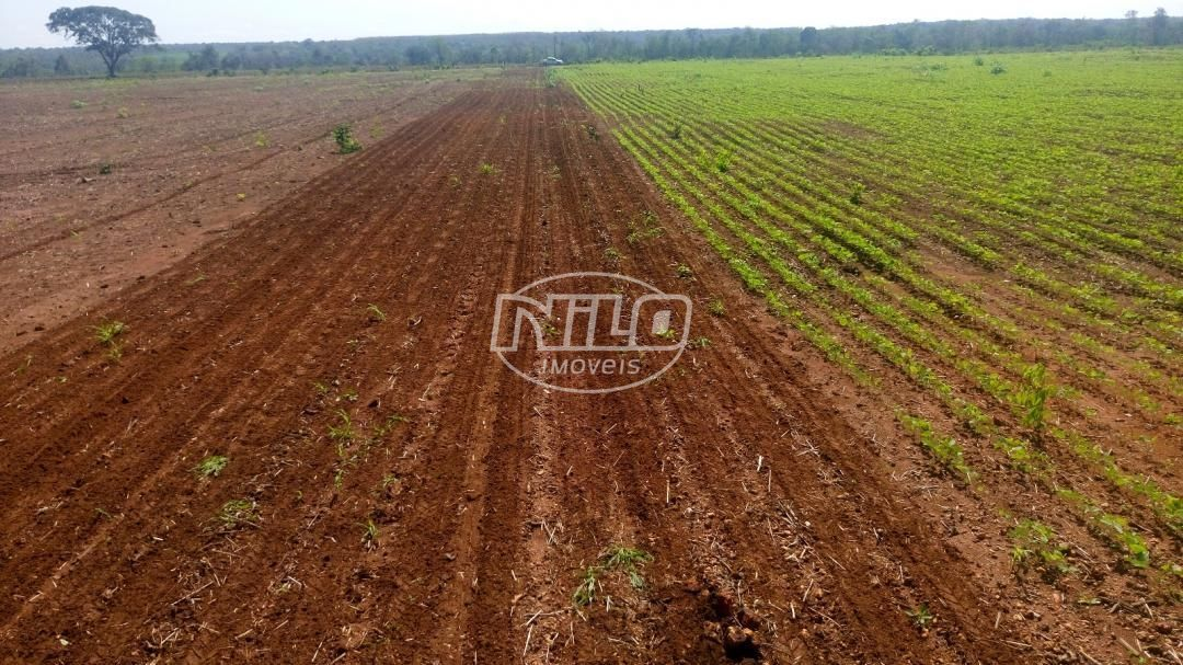 772 hectares no Piauí