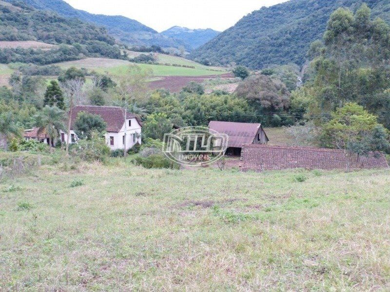 60 hectares em Nova Palma