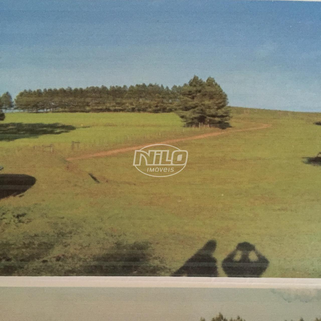 1550 hectares em Pinheiro Machado