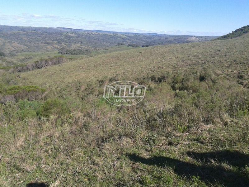 380 hectares em Pinheiro Machado