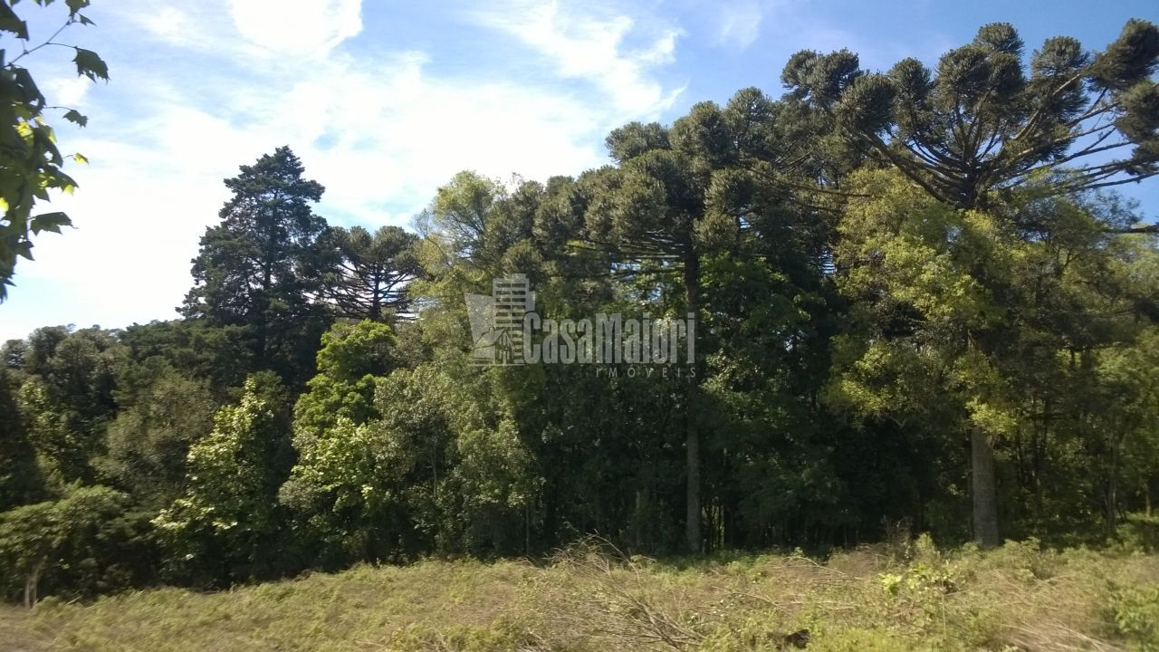 Terreno comercial à venda, 44.579 m² por R$ 4.000.000,00
