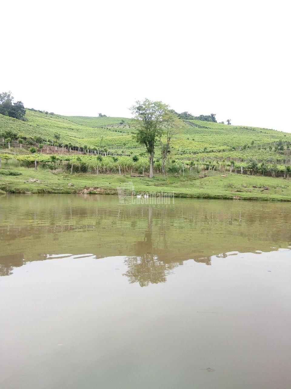 Terreno/Lote à venda  no Zona Rural - Monte Belo do Sul, RS. Imóveis