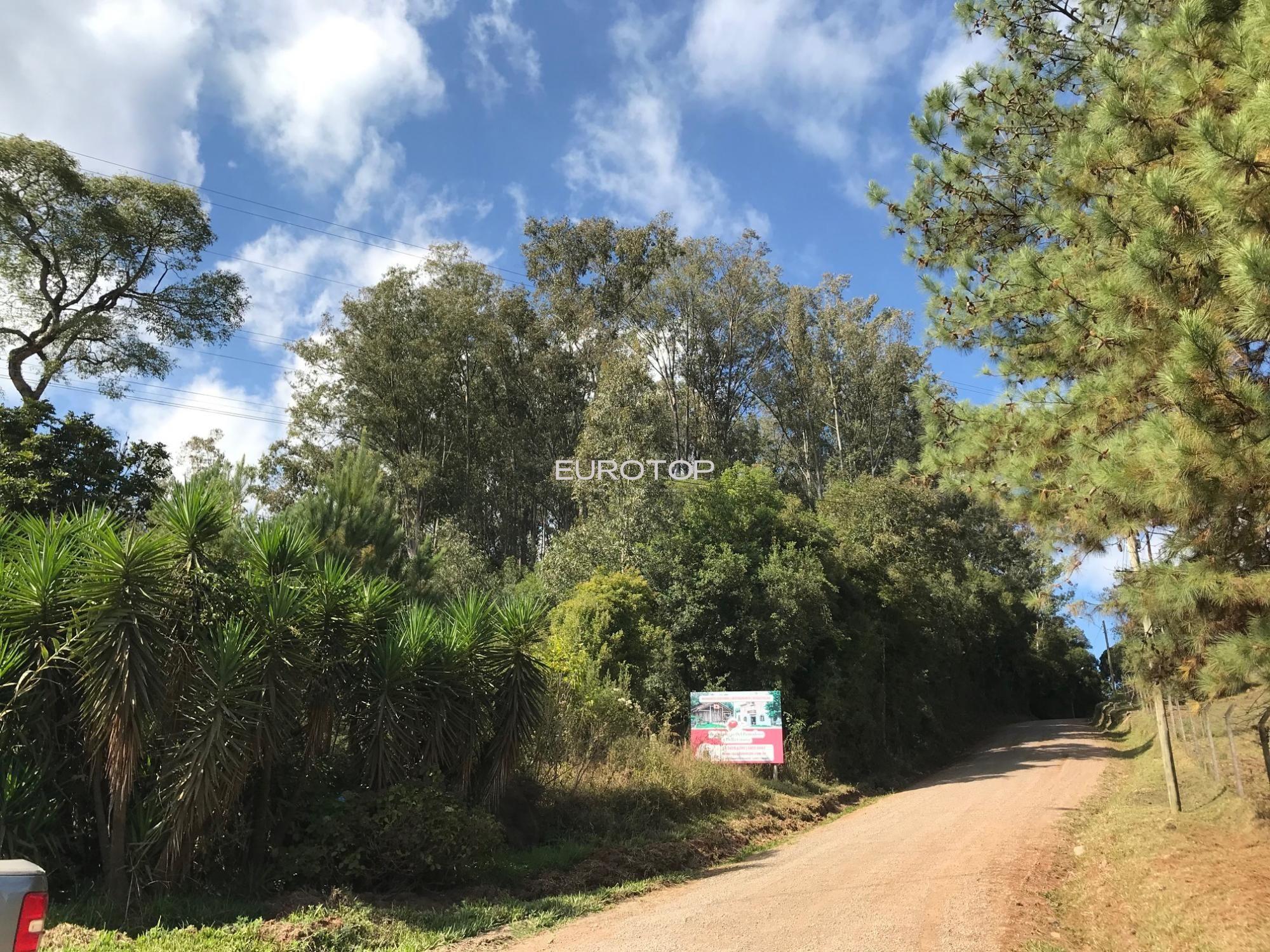 Terreno comercial à venda  no São Pedro - Bento Gonçalves, RS. Imóveis