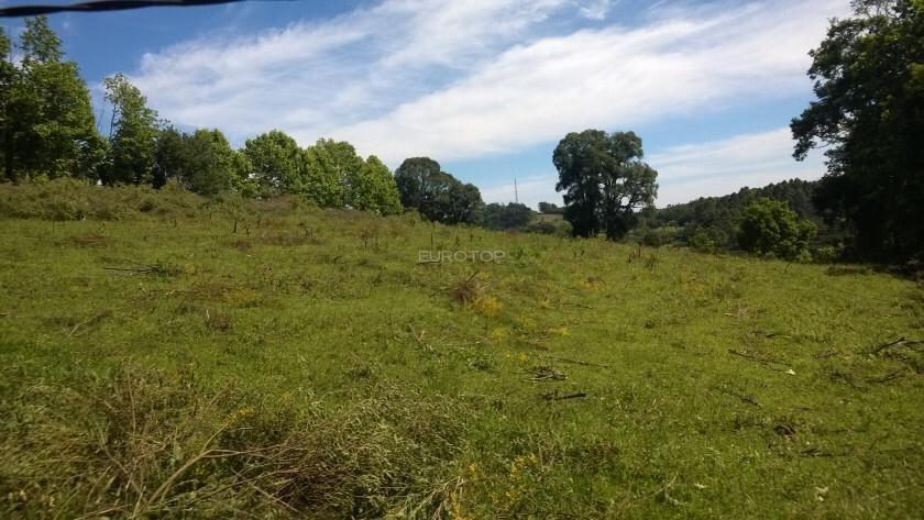 Terreno comercial à venda  no Vinosul - Bento Gonçalves, RS. Imóveis
