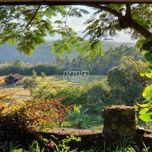 Fazenda Top, Turismo Rural e Pecuária.