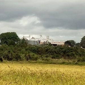 Excelente fazenda 1.497 hectares, arroz, soja e pecuária próxima a Cachoeira do Sul