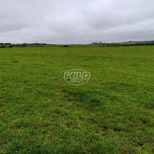 Linda área de 60 hectares com lavoura!!