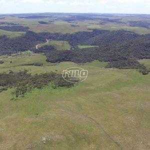 348 hectares em São José dos Ausentes