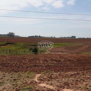1017 hectares à venda em Rosário do Sul