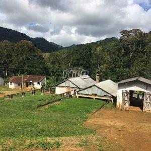 Fazenda de cacau em Una - Ba.