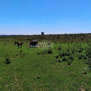 Excelente área de 110 hectares a venda!!