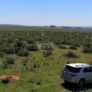 Fazenda de 209 hectares a venda!!