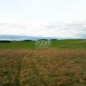 113 hectares em Aceguá