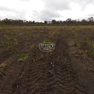 1802 hectares no Piauí