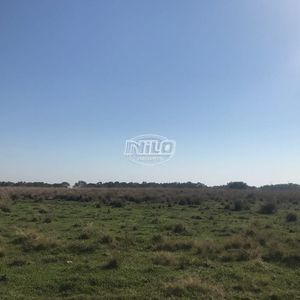 1330 hectares em Garruchos