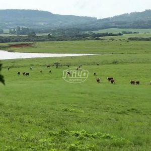 1024 hectares em Vale Verde