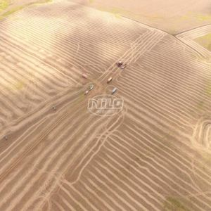 165 hectares em Santo Antônio da Missões