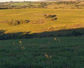 campo-cacapava-do-sul-imagem