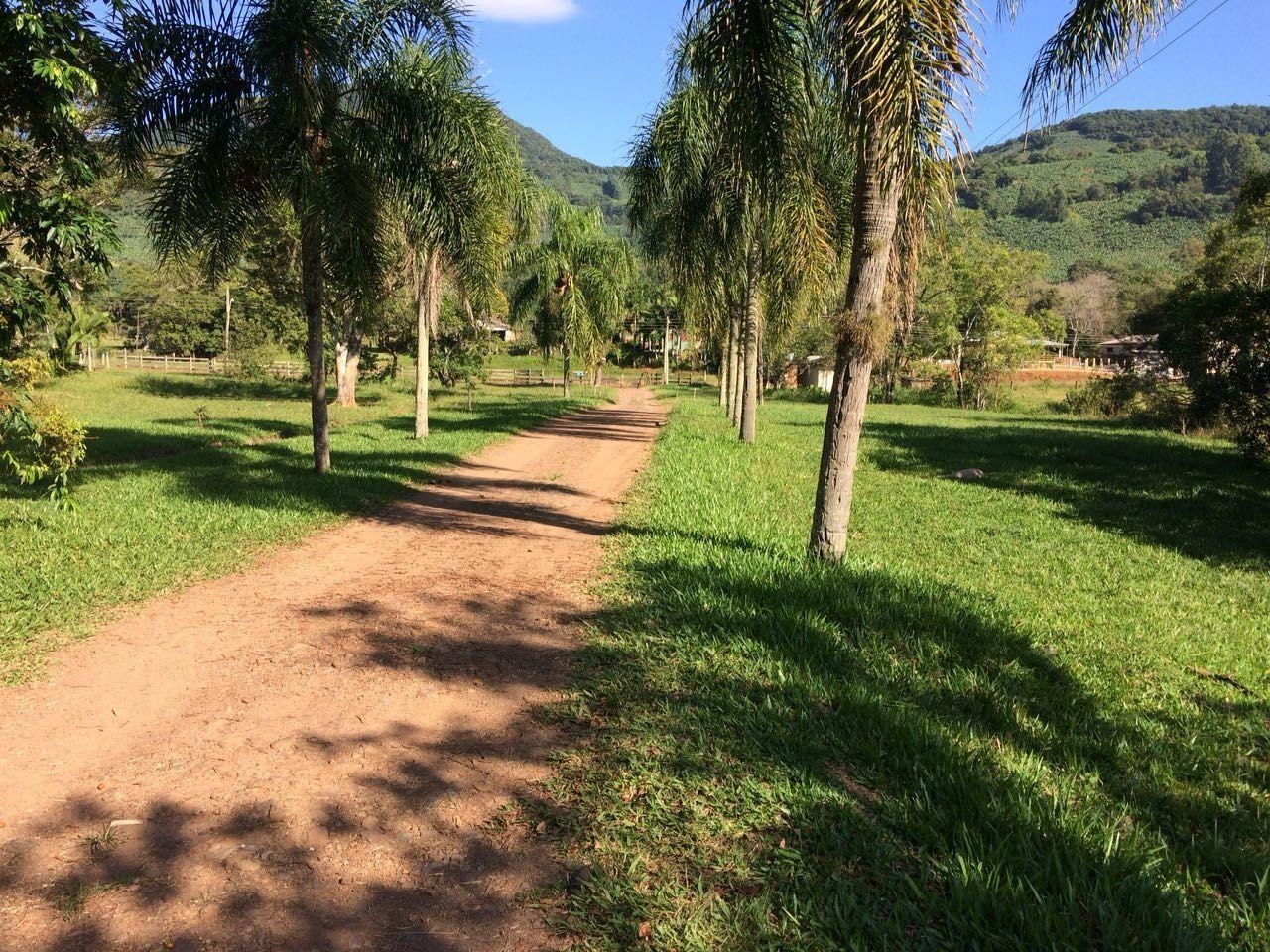 Fazenda/sítio/chácara/haras à venda  no Pixirica - Morrinhos do Sul, RS. Imóveis