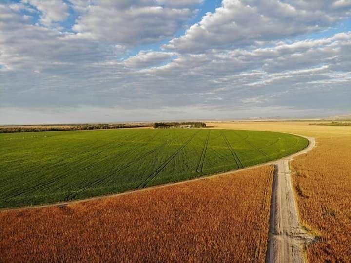 Terreno comercial à venda  no Zona Rural - Balsas, MA. Imóveis