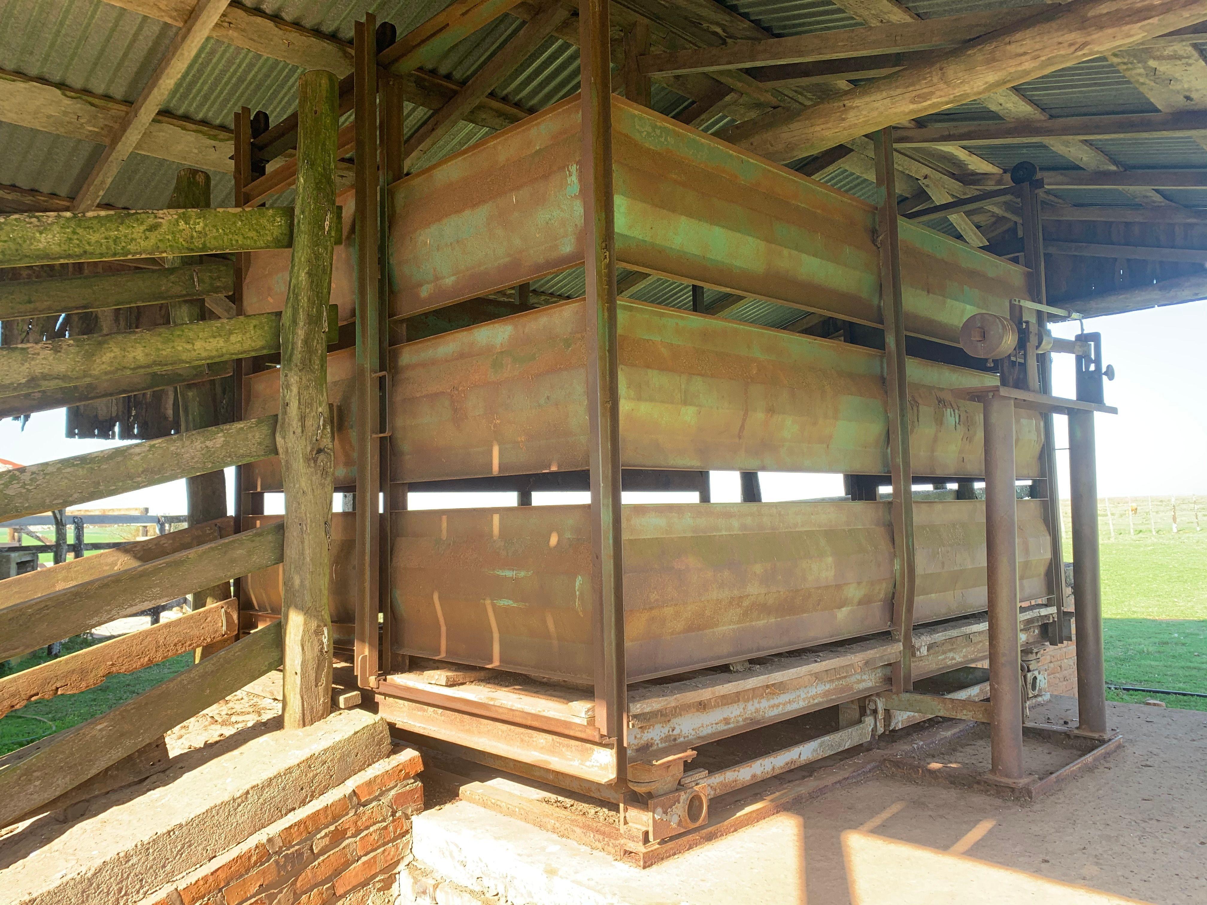 350 de coxilhas altas e solo argiloso para soja em Manoel Viana