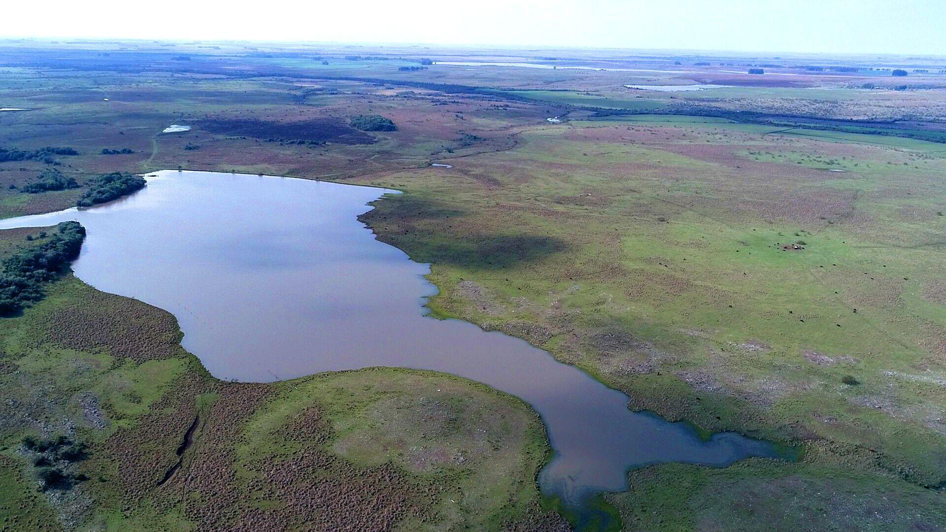 250 hectares de pecuária em Alegrete/RS