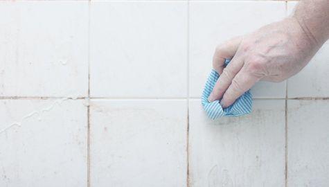 4 dicas para manter sua casa seca e livre do mofo
