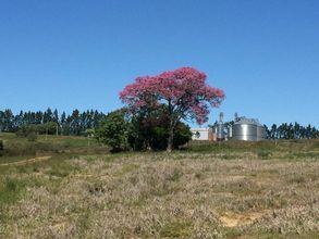 fazenda-alegrete-imagem