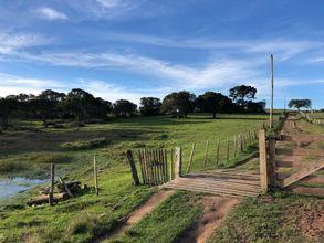 fazenda-cangucu-imagem