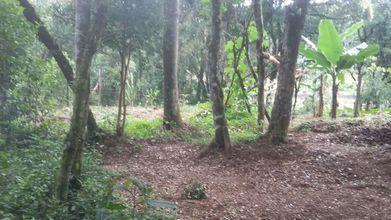 terreno-sao-jose-dos-pinhais-imagem