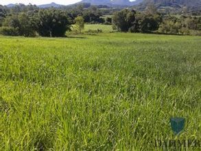 area-rural-colinas-imagem