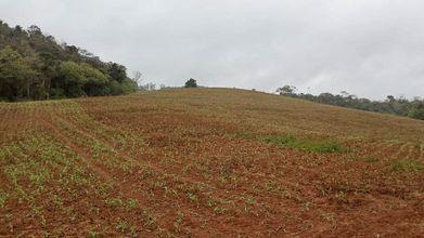 area-rural-agronomica-imagem