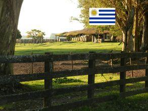 area-rural-acegua-imagem